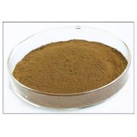 Quality Oleuropein 20% Natural Olive Leaf Extract For Dietary Supplement Brown Powder for sale