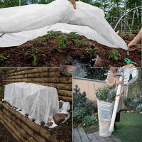 Quality White Color Anti - UV Non Woven Landscape Fabric Roll for Protecting Plants Folding for sale