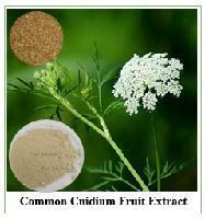China Factory Supply Organic common cnidium fruit herbsextract for sale on sale