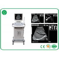 Quality 5 level Full Digital Trolley b mode ultrasonography , 14 Inch ultrasound imaging equipment for sale