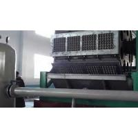 Quality PLC Touch Screen Control Paper Egg Tray Machine , Egg Crate Making Machine for sale
