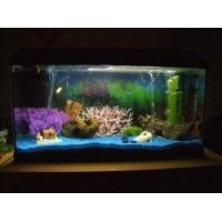 fish tank decoration - quality fish tank decoration for sale