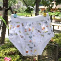 Quality Eco Friendly 100 Polyester Organic Cute Little Kids Underwear for Girls  for sale