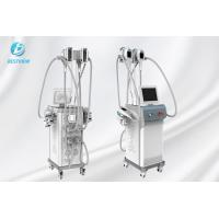 Quality Fat Reducing Cryolipolysis Slimming Machine  / Cryolipolysis At Home Machine for sale