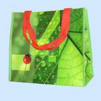 Quality Promotional PP Woven Shopping Zipper Bag for sale