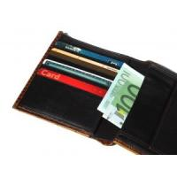 2012 fancy women wallet with fashion purse