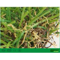 Quality Nature Garden Artificial Grass 35mm Uv Resistant with High Color Fastness for sale