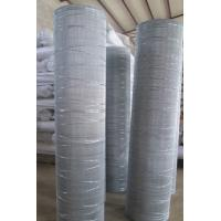 Quality Electro Galv. Wire Mesh-Cut Border for sale