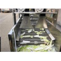 Quality Silver Vegetable Dryer Machine , Industrial Food DehydratorFor Restaurant for sale