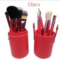 China Professional 12pcs Brand Cosmetic Makeup Brush Set on sale
