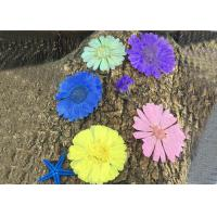 Quality Calendula Pressed Dried Flower Art Diameter 4 - 6 CM Natural Plant For Wedding for sale