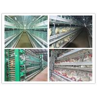China Poultry Farming Equipment For Layer, Broiler and Baby Chicks Battery Chicken Cage on sale