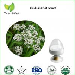 China cnidium extract,cnidium fruit extract,cnidium monnieri extract,osthole on sale