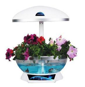 Quality Electronic Mini Flower Garden Smart Fish Tank Aquarium for sale