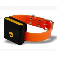 Category Garmin in addition How To Build A Dock In A Pond furthermore Wholesale Dog Collar Gps moreover Gps trackerpets moreover Electronic Dog Training Collars For Dogs. on gps dog tracker collar html