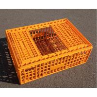 Quality Platic bird transport crate for sale