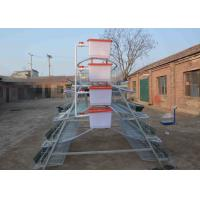 Quality Professional Galvanized Chicken Breeding Cages , Poultry Laying Cages 2.15*2.4 *1.95m Size for sale