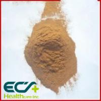Quality Brown Premium Health Supplements Artichoke Extract Powder For Protect Heart Blood for sale