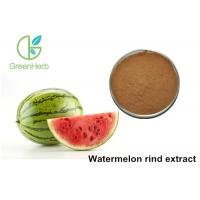 China Non - Irradiated Plant Extract Powder Watermelon Rind Extract Powder on sale