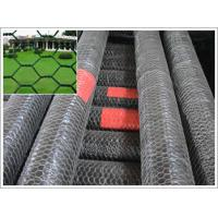 Buy Electro Galvanized hexagonal wire mesh at wholesale prices