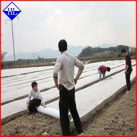 UV Protection Agriculture Non Woven Fabric , Greenhouse Plant Protection Cover Cloth