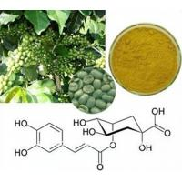 Quality Green coffee bean extract natural anti-oxidant product for sale