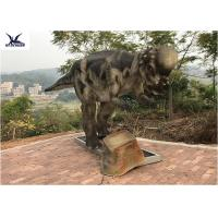 Quality Pachycephalosaur Robotic Dinosaur Garden Statue Soft And Smooth Surface Treatment for sale