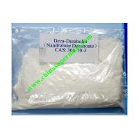 China Medical Deca Trenbolone Muscle Growth Steroids Powder No Side Effect Nandrolone Decanoate on sale