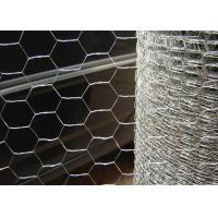 Quality *1/2 Inch*1.2M*25M Hexagonal Chicken Wire Hot Dipped Galvanized 24 Gauge for sale