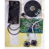 China Recordable sound module S-3011 on sale