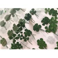 Quality Both Sides Green Clover Small Dried Flowers For Hand Painting Raw Materials for sale