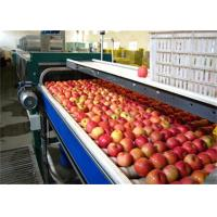 Quality High Speed Vegetable and Fruit Processing Machine / Apple Juice Making Machinery for sale