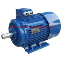 China Y2 Series Electric Motor for Pump and Blower with High Efficiency Energy Saving AC Motor on sale