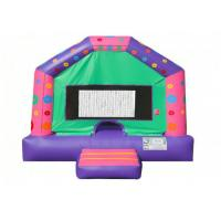Quality Indoor Playground Funny Inflatable Jumping Castle , Entertainment Children'S Bounce House for sale