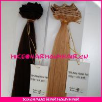 Quality wholesale virgin brazilian clip in hair extensions/clip in human hair extensions/clip in hair extension for sale