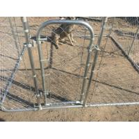 Temporary Dog Run : Chain mesh dog kennel temporary fence ft