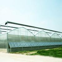 China Polycarbonate greenhouse roofing sheets on sale
