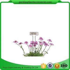 Decorative Plant Garden Landscape Markers / Garden Plant Marker