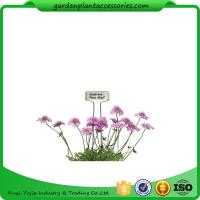 Buy Decorative Plant Garden Landscape Markers / Garden Plant Marker at wholesale prices