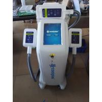 Buy Vertical Type Cryolipolysis Fat Freeze Slimming Machine 300mm × 400mm × 900mm at wholesale prices