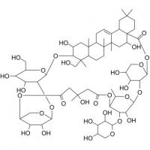 Quality Tubeimoside B 98% HPLC, CAS No.: 115810-12-3,Tubeimoside II, Bolbostemma paniculatum Extract, Shaanxi Yongyuan Bio-Tech for sale