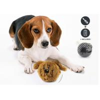 Quality Interactive Shaking Bouncy Plastic Dog Balls Auto Bounce / Squeak For Entertaining for sale