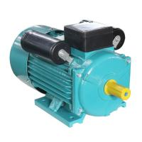 China 2800RPM 0.5hp 0.37kw Electric Motor Water Pump 50HZ 60 Hz YC80A-2 Cast Iron Housing on sale
