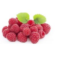 Quality Raspberry P.E. powder nutrition supplement by Finesky for sale