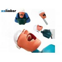 Quality Dental Simulator Dental Chair Unit Detnal Teaching Model Training Simulator Head with Belt for sale