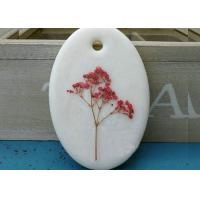 Quality Babys Breath Pressed Flower Gifts Material True Plants For Thanksgiving for sale