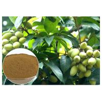 Quality Oleuropein Natural Olive Leaf Extract Natural Ingredient With HPLC Test for sale