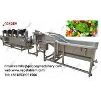 Quality Factory direct price automatic fruit and vegetable washing and drying line for sale