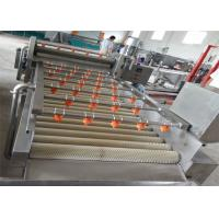 Quality Commercial Ozone Fruit Processing EquipmentWith Air Bubble Brush Rolling for sale