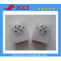 Quality Export Plastic Sound Module Electronic Musical Sound Module In Square Shape for sale